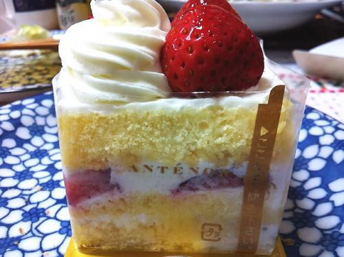 ANTENOR4