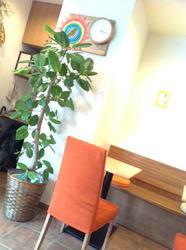 カフェ ソレイユ2